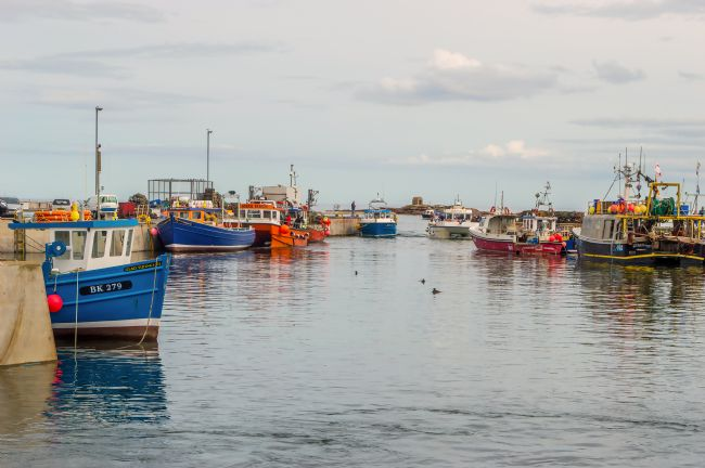 John Ellis | Seahouses Harbour