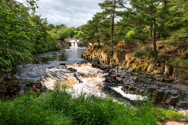 John Ellis | Low Force Waterfalls