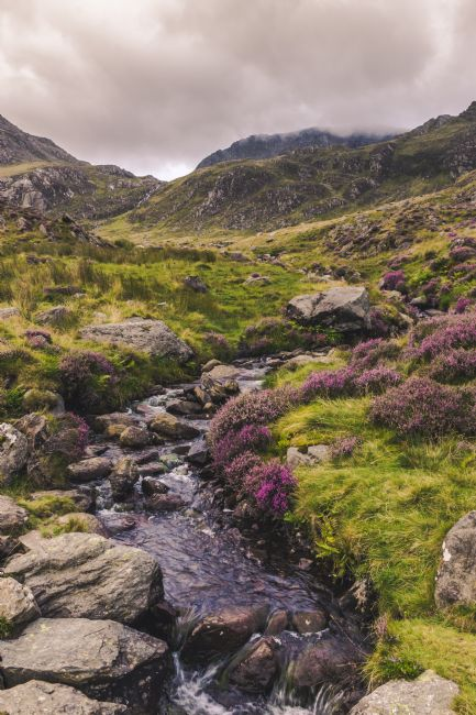 Daniel Davidson | Streaming from Snowdonia