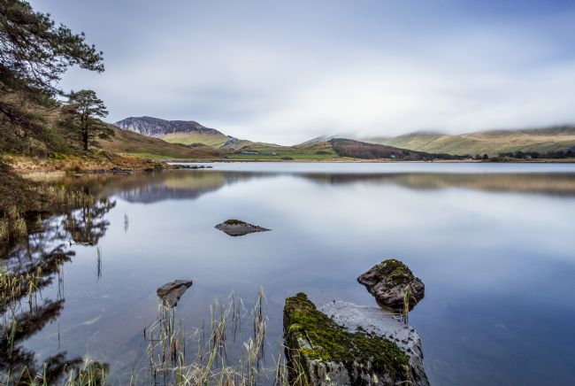 Pete Lawless | Llyn Dywarchen