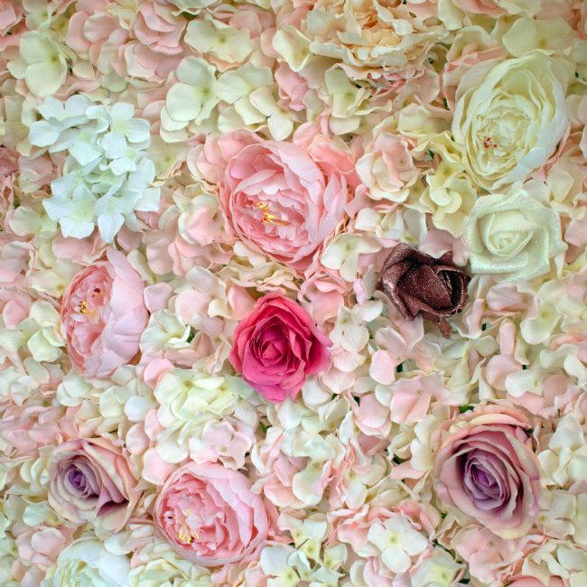 Howard Corlett | Rose display