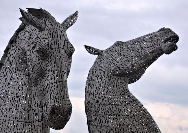 James Hogarth | Grey kelpies