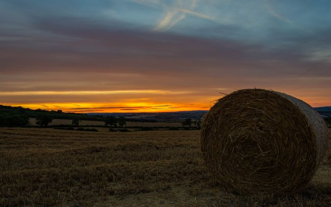 Mark Ingleby | Harvest Sunset