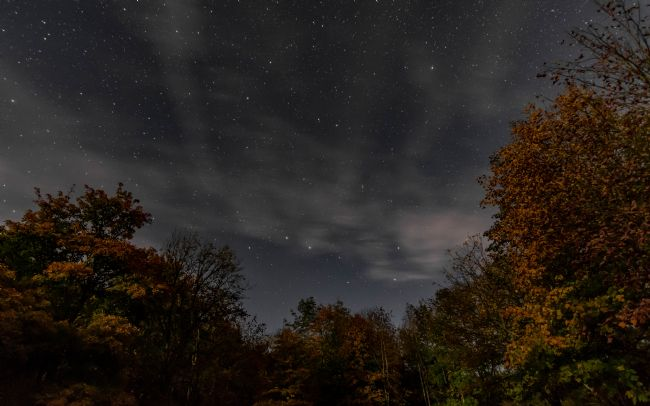 Mark Ingleby | Autumn under the stars