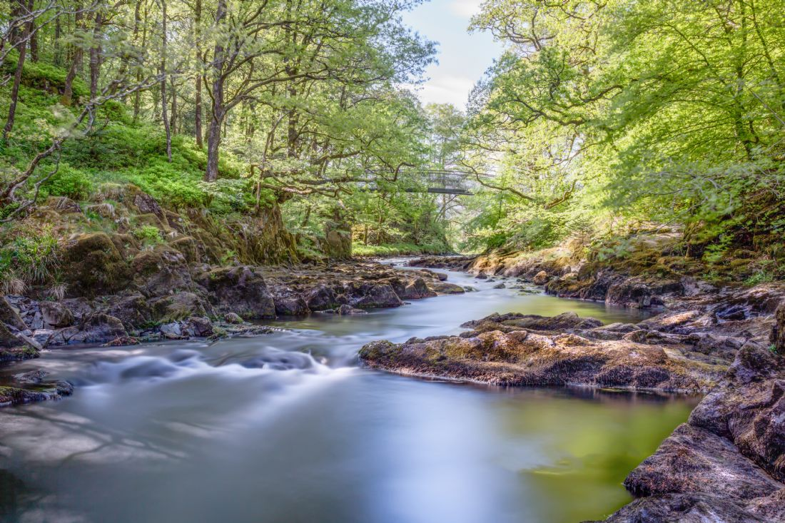 Roger Green | The River Brathay