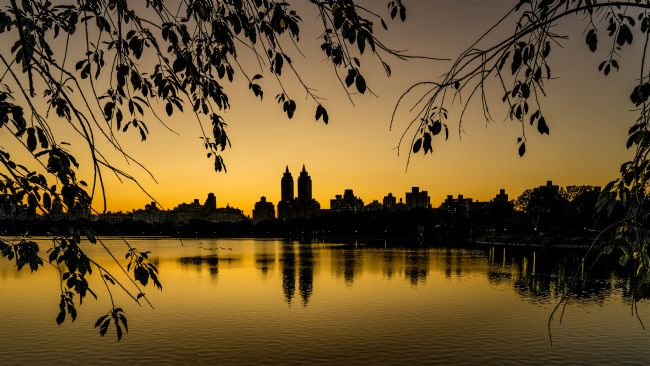 Chris Lord | Central Park Sunset