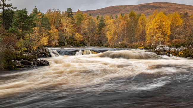 George Robertson | Autumn colours in Glen Affric