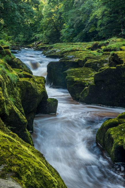 George Robertson | The Strid on River Wharfe