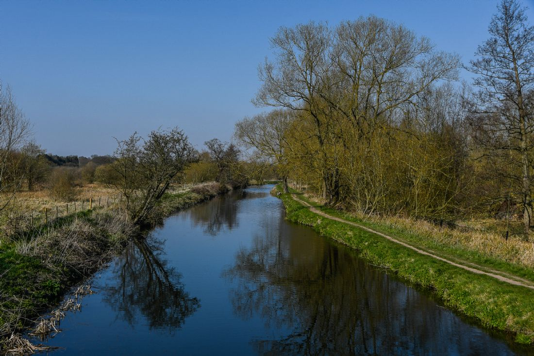 Mike Carroll | River Stort in spring