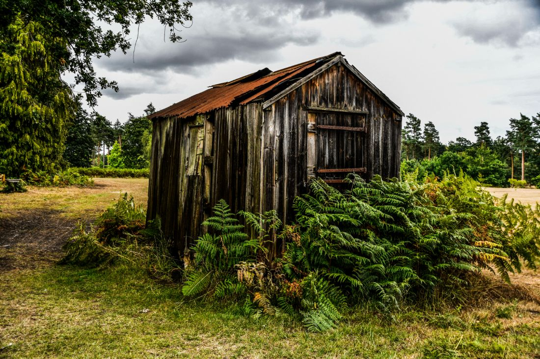 Mike Carroll | The old gardeners hut