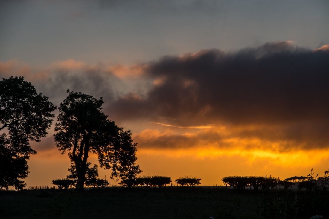 Mike Carroll | Northumbrian Sunset