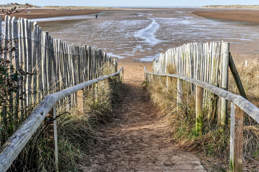 Mike Carroll | The path to Holkham beach