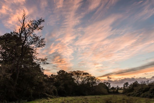 Mike Carroll | Bocking Sunset