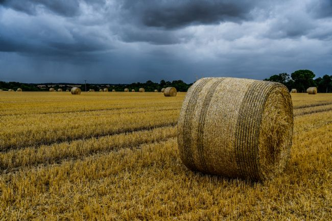Mike Carroll | Stormy day after the harvest