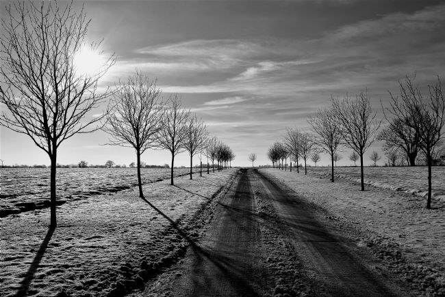 Mike Carroll | Winter's Day in Old Thorley