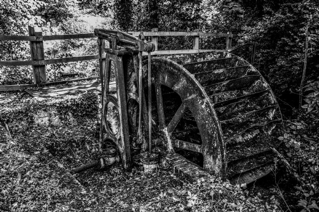 Mike Carroll | Old water wheel at Panshanger Park
