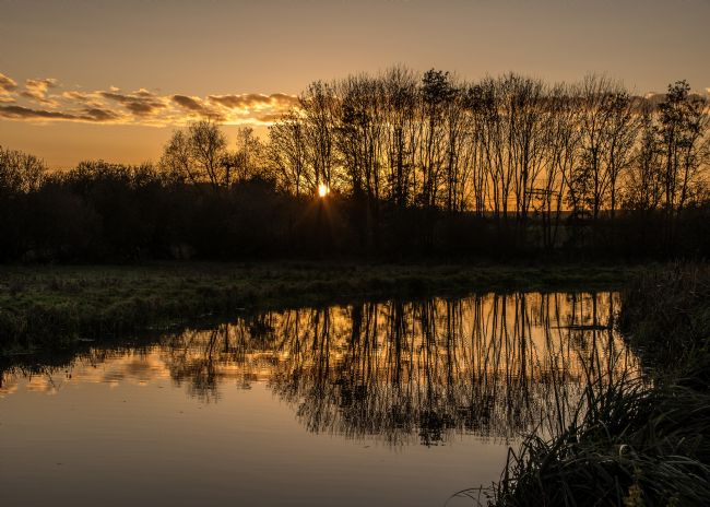 Mike Carroll | Stort Sunset