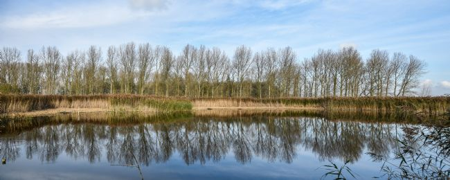 Mike Carroll | The Mere, RSPB Lakenheath Fen
