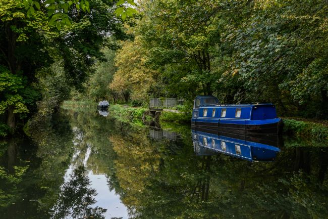 Mike Carroll | Autumn on the River Stort (1)