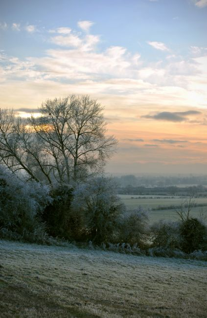Graham Carnduff-Youngg | Winters Dawn in The Chilterns