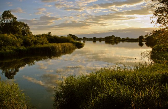 Graham Carnduff-Young | Marsworth Reservoir, Tring