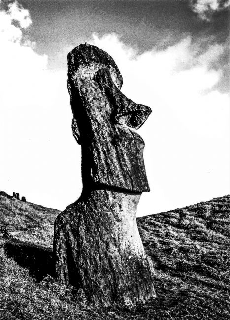 Theodore Crush | Ancient Moai