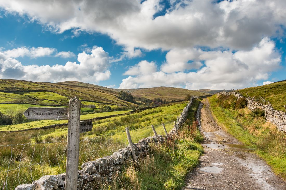 Richard Laidler | The Pennine Way down from Great Shunner Fell, Swaledale, Yorkshire Dales