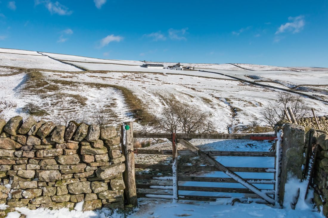 Richard Laidler | Ash Dub from Ettersgill House, Teesdale, in Winter