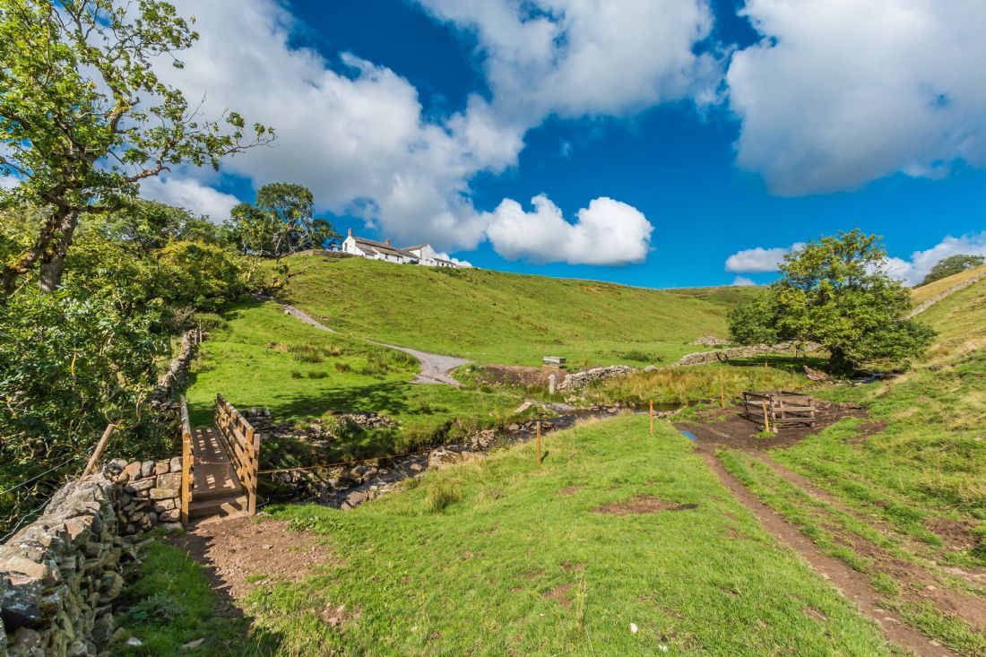Richard Laidler | Summer at Birch Bush Farm, Upper Teesdale