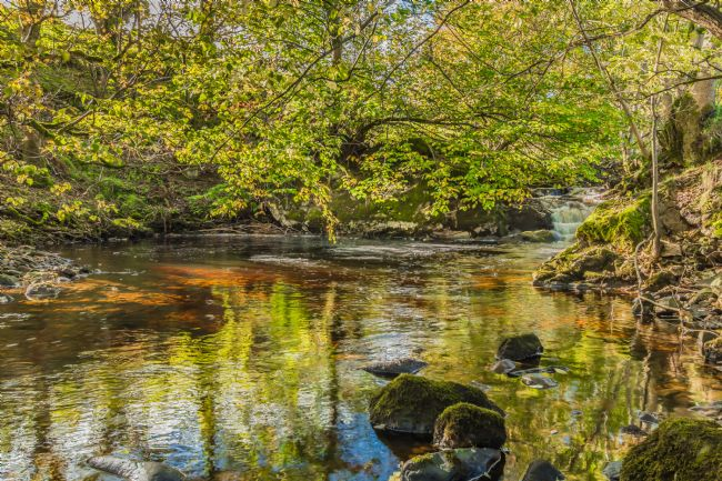 Richard Laidler | A Tranquil Pool on Thwaite Beck
