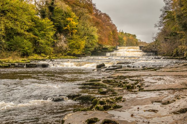 Richard Laidler | Autumn at Lower Falls, Aysgarth, Wensleydale, Yorkshire Dales