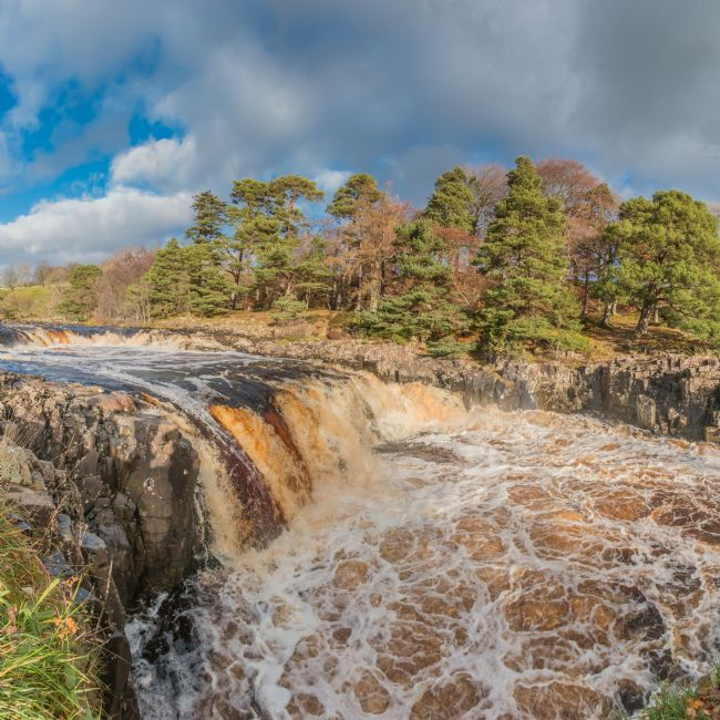 Richard Laidler | Swollen River Tees at Low Force Waterfall in Autumn
