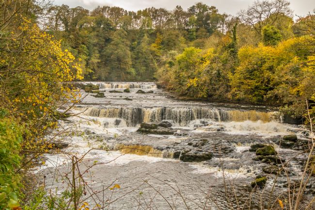 Richard Laidler | Autumn at Upper Falls, Aysgarth, Wensleydale, Yorkshire Dales