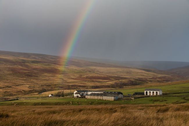 Richard Laidler | Rainbow at Middle End Farm, Teesdale after Storm Atiyah
