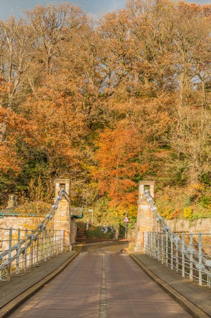 Richard Laidler | Bridge into Autumn