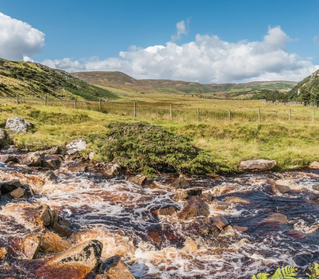Richard Laidler | Over Blea Beck to Cronkley Fell, Upper Teesdale