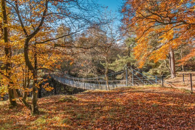 Richard Laidler | Autumn at Wynch Bridge, Teesdale