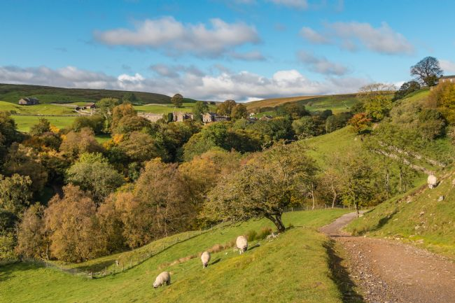 Richard Laidler | Autumn at Keld, Swaledale, Yorkshire Dales