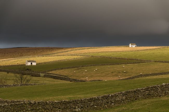 Richard Laidler | Dramatic Light on Bowlees Barns, Teesdale