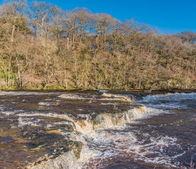 Richard Laidler | January Sun on Whorlton Cascades