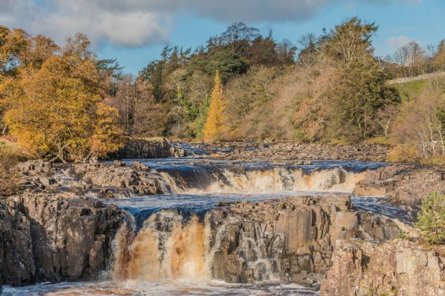 Richard Laidler | Autumn at Low Force Waterfall, Upper Teesdale