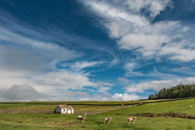 Richard Laidler | Big Sky over Bowlees, Teesdale