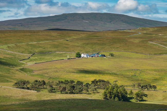 Richard Laidler | Peghorn Lodge Farm, Teesdale