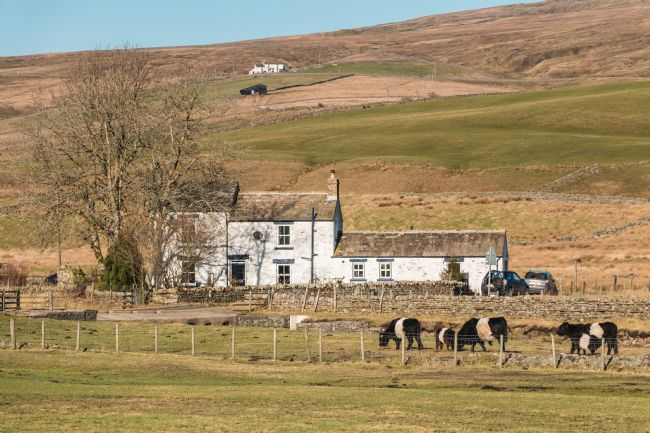 Richard Laidler | Low End farm, Harwood, Upper Teesdale
