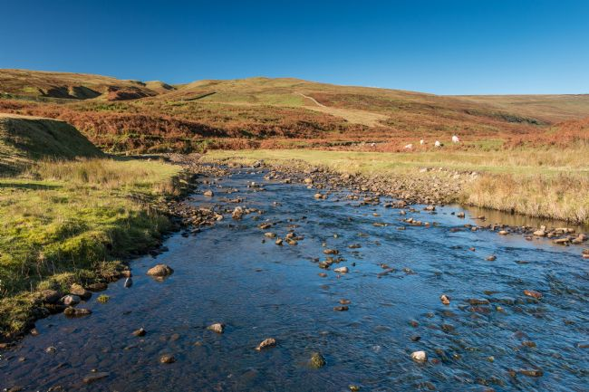 Richard Laidler | North Pennines Moorland Stream