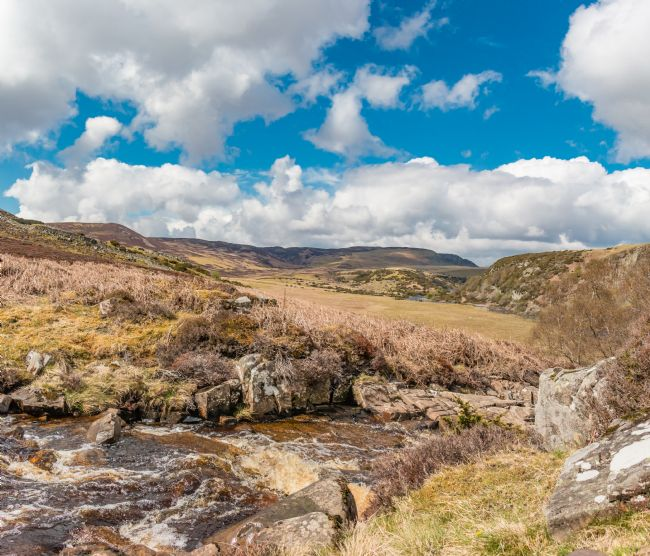 Richard Laidler | Blea Beck, Cronkley Fell and Scar, Teesdale in Spring Sunshine
