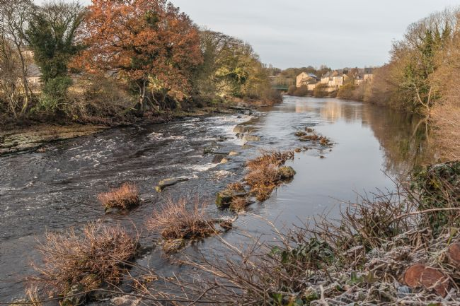 Richard Laidler | A Frosty Morning on the River Tees at Barnard Castle, Teesdale