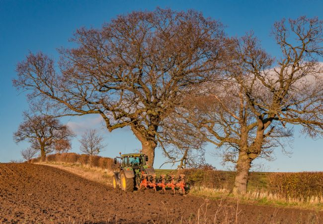 Richard Laidler | Finishing Off the Ploughing