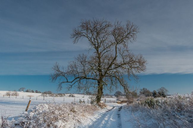Richard Laidler | Park Lane, Hutton Magna, Lower Teesdale in Winter