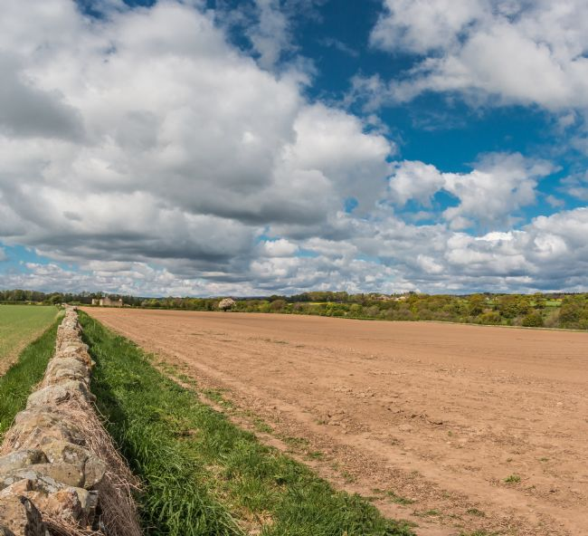 Richard Laidler | Big Sky over the Teesdale Way at Thorpe